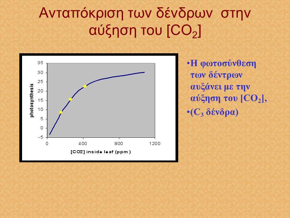 Ανταπόκριση των δένδρων στην αύξηση του [CO2]